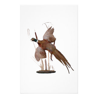 Pheasant Mount Stationery