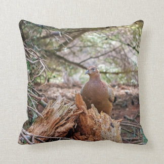 Pheasant nature photography picture  cushion
