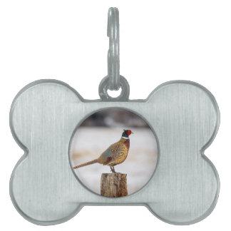 Pheasant Pet Name Tag
