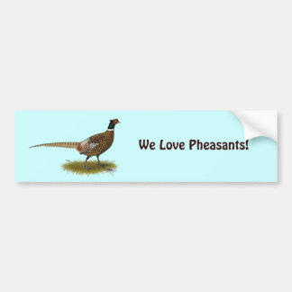 Pheasant Rooster Bumper Stickers
