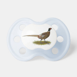 Pheasant Rooster Pacifier