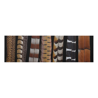 Pheasant tail feathers panel wall art