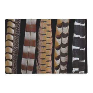 Pheasant tail feathers placemat