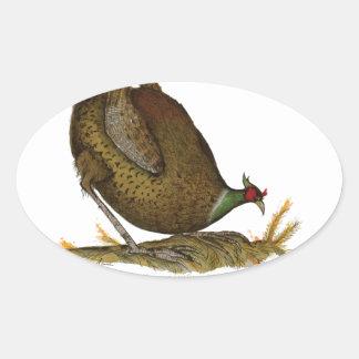 pheasant wild bird, tony fernandes oval sticker