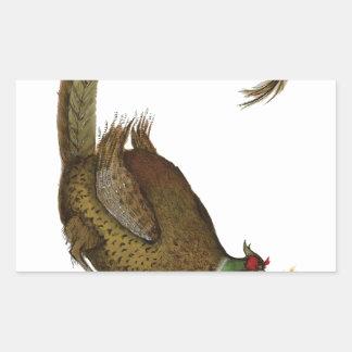 pheasant wild bird, tony fernandes rectangular sticker