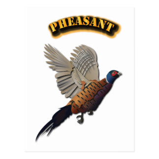 Pheasant with Text Postcard