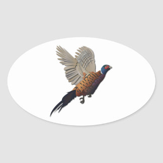 Pheasant without Text Oval Stickers