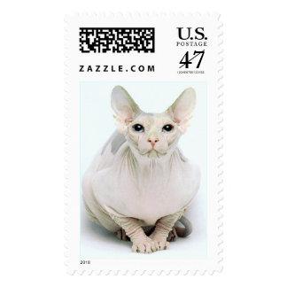 phenix postage