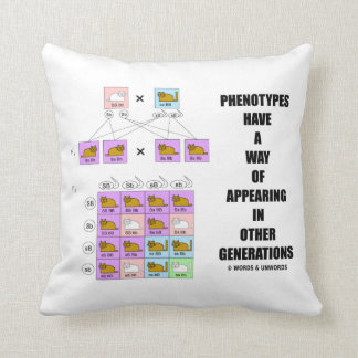 Phenotypes Way Of Appearing Generations Cats Pillows