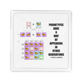 Phenotypes Way Of Appearing Generations Cats Square Serving Trays