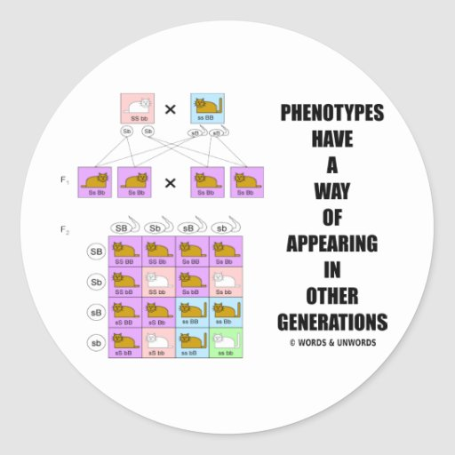Phenotypes Way Of Appearing In Other Generations Classic Round Sticker