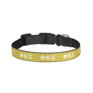 Phi Kappa Sigma White and Gold Letters Dog Collar