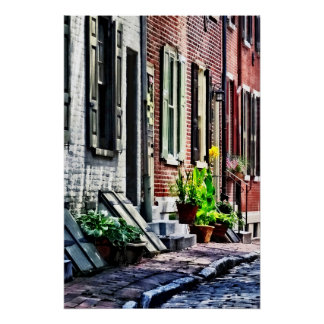 Philadelphia Pa Street With Flower Pots Poster