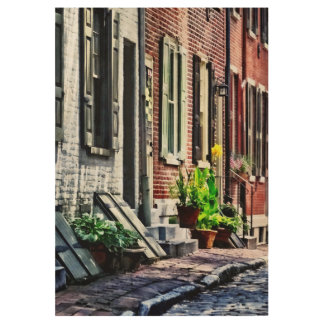 Philadelphia Pa Street With Flower Pots Wood Poster
