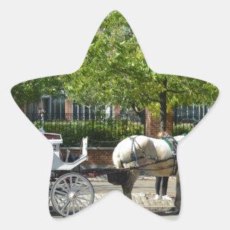 Philadephia Star Sticker