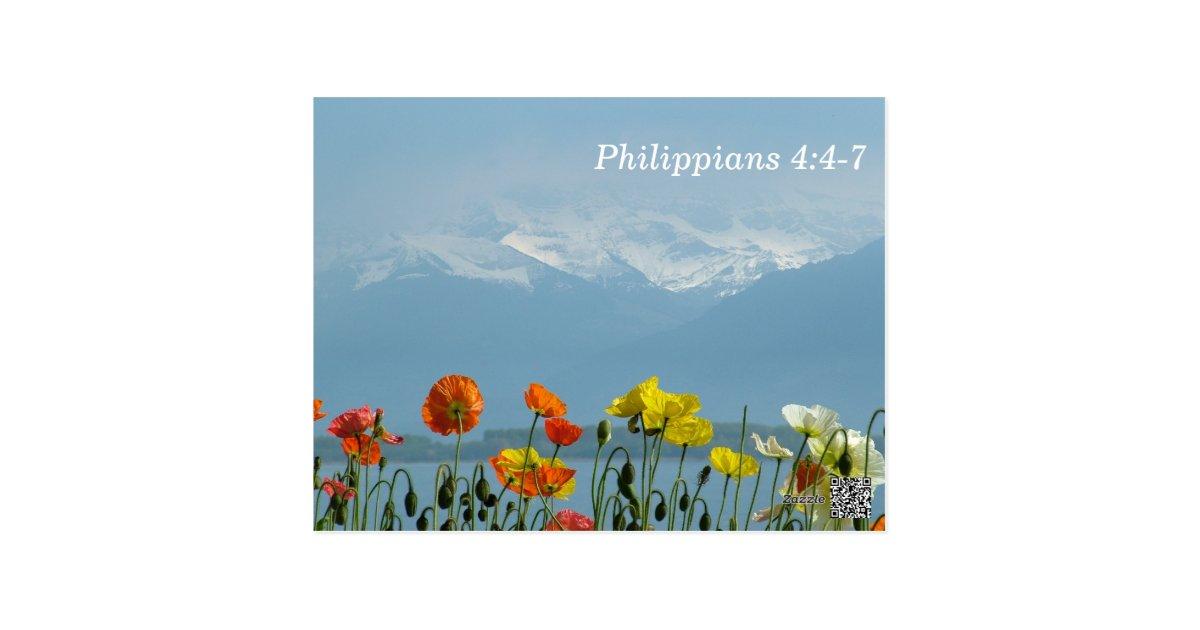 Philippians 4 4 7 Scripture Memory Card Zazzle Com