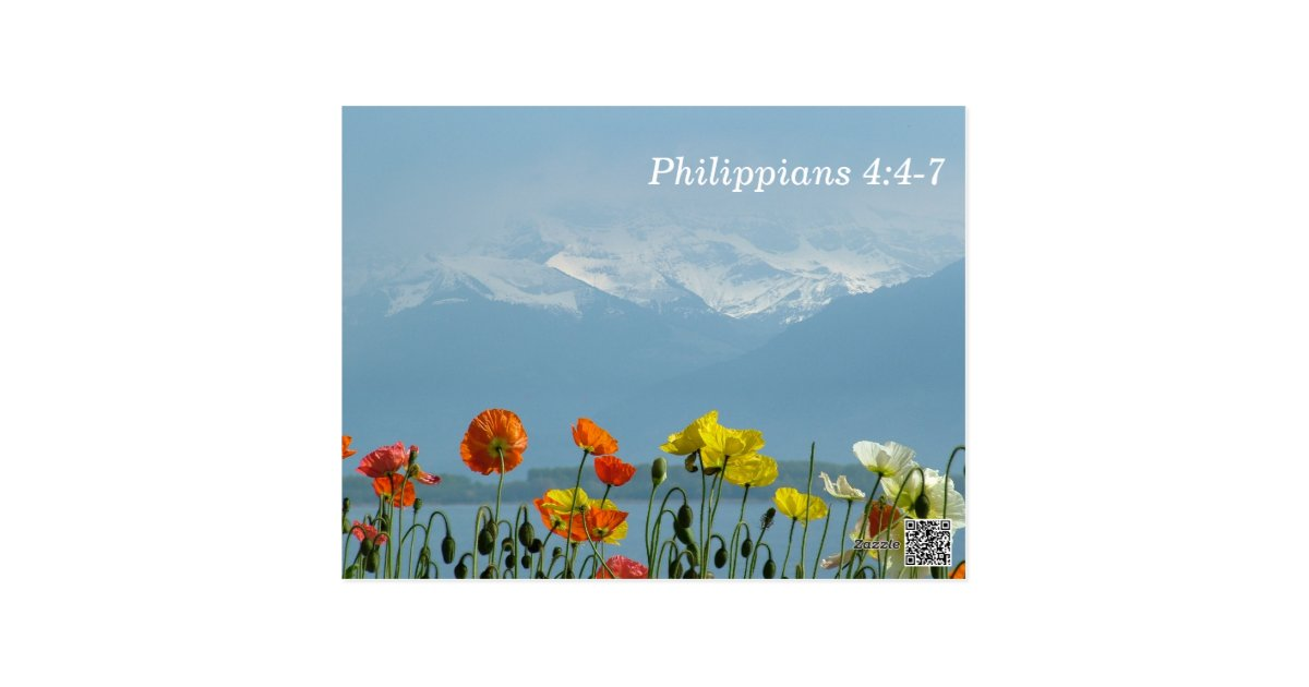 Philippians 4 4 7 Scripture Memory Card Zazzle Com