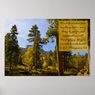 Philippians 4:6 Poster print