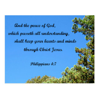 Philippians 4:7 And the peace of God.... Postcard