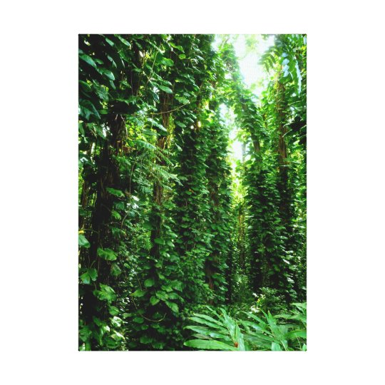 Philodendron Forest Canvas Print