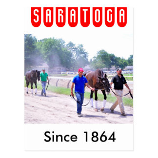 Phipps Thoroughbreds at Saratoga Post Card