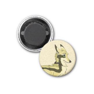Phiro Highspring 1 Inch Round Magnet