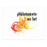 Phlebotomists es caliente tarjeta postal