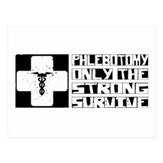 Phlebotomy Survive Postcard