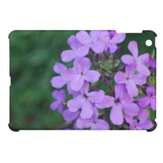 phlox-31.jpg iPad mini cover