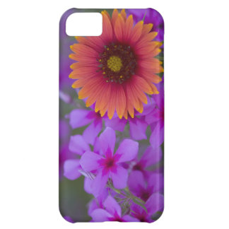 Phlox and Indian Blanket near Devine Texas iPhone 5C Cases