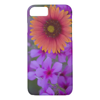 Phlox and Indian Blanket near Devine Texas iPhone 7 Case