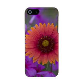 Phlox and Indian Blanket near Devine Texas Metallic iPhone SE/5/5s Case