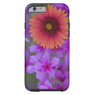 Phlox and Indian Blanket near Devine Texas Tough iPhone 6 Case