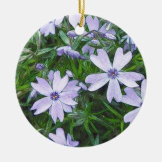 Phlox azul bonito del arrastramiento ornamente de reyes