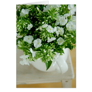 Phlox Flowers Card