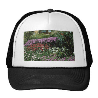 Phlox monarda canna geranium flowers hat