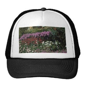 Phlox monarda canna geranium trucker hat