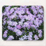 Phlox púrpura bonito tapetes de ratones