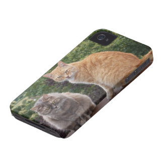 Phoebe and Levi iPhone 4 Case