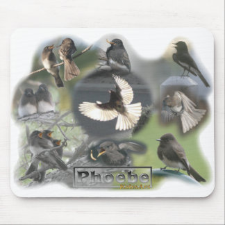 Phoebe Birds Photo Collage Mouse Pad