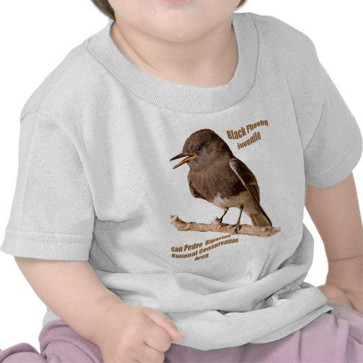 Phoebe negro camiseta