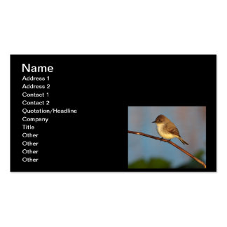 Phoebe on Stage Business Card Template