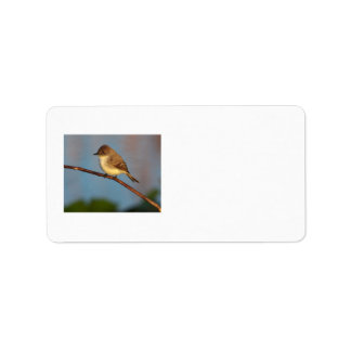 Phoebe on Stage Personalized Address Label