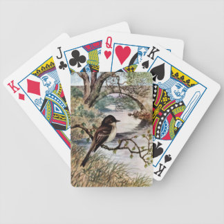 Phoebe y puente de piedra sobre cala cartas de juego