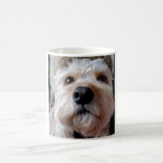 PhoebethePrincess, Phoebe, Cavapoo, Dog White Mug