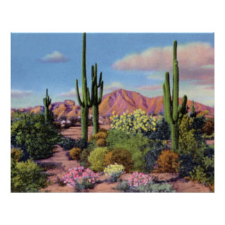 Phoenix Arizona Camelback Mountain Poster