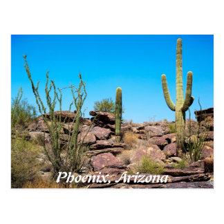 Phoenix Arizona Tarjeta Postal