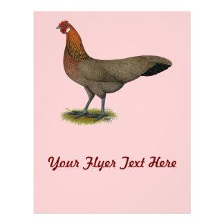 Phoenix BB Red Hen Flyer Design