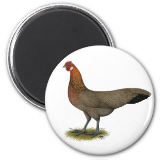Phoenix:  BB Red Hen Magnets