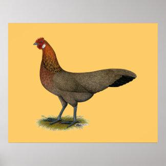 Phoenix:  BB Red Hen Poster
